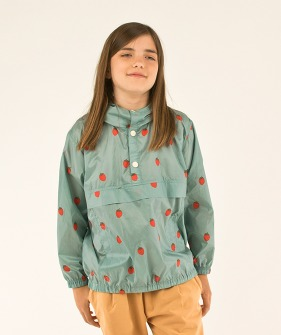 Strawberries Pullover - Sea Green/Red